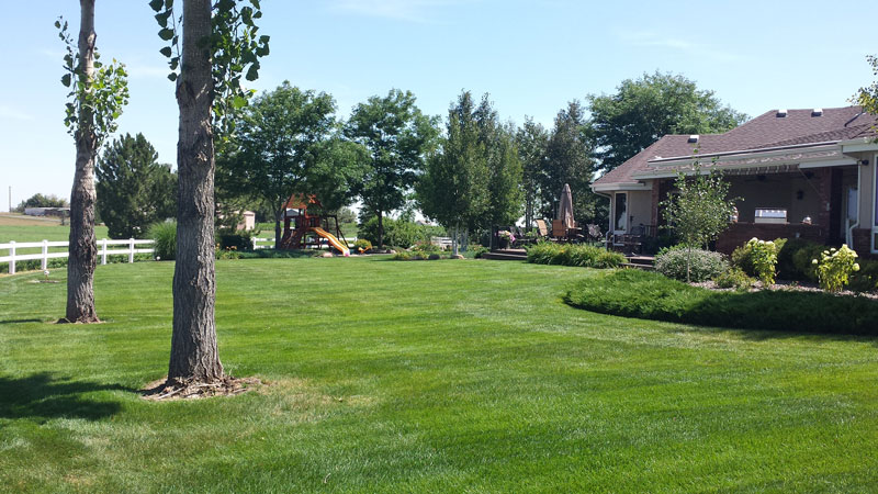 Client Landscaping Example